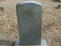 F. P. Abernethy