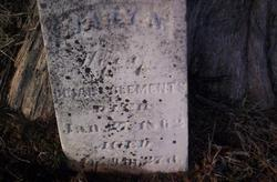 Mary Ann <i>Love</i> Clements
