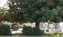 Cary Community Cemetery