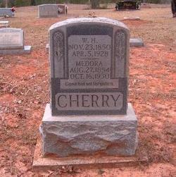 Medora Delphine <i>Hester</i> Cherry