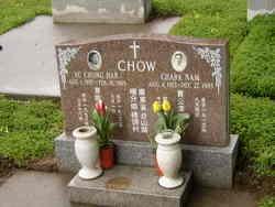 Chark Nam Chow
