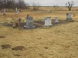 Benvanue Cemetery