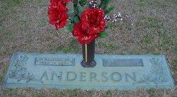 Julia H. Anderson