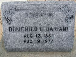 Domenico E. Bariani