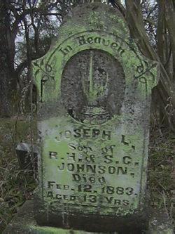 Joseph L Johnson