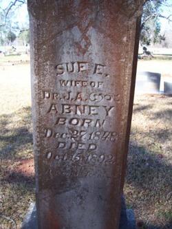 Susannah Elizabeth Susan <i>Davis</i> Abney