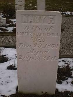 Mary F Mitchell