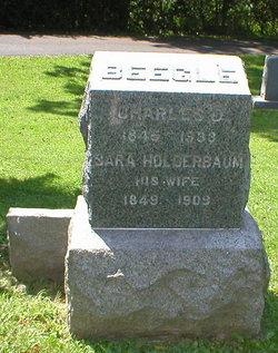 Sara <i>Holderbaum</i> Beegle