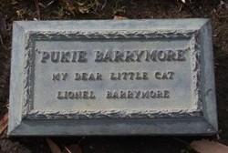 Pukie Barrymore