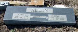 Nannie Mae <i>Landreth</i> Allen