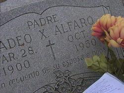 Tadeo Alfaro