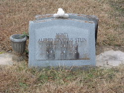 Alfred Ignatius Monty Stein
