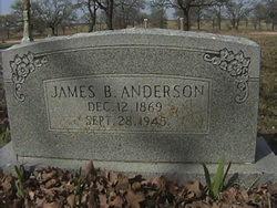 James B Anderson