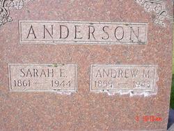 Sarah Ellen <i>Pickering</i> Anderson