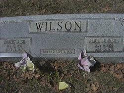 Alice <i>Johnson</i> Wilson
