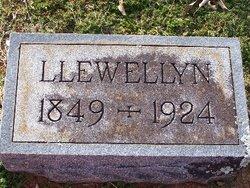 Llewellyn Been