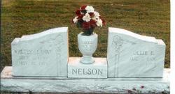 Walter John Nelson