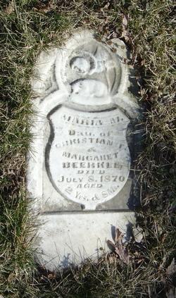 Maria M Beerkle