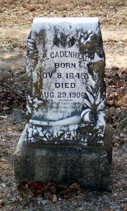 Francis Marion Cadenhead