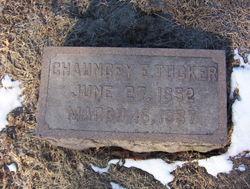 Chauncey Elijah Tucker