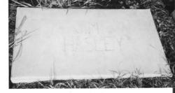 Jim Hasley