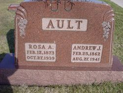 Rosa A <i>Schimmel</i> Ault