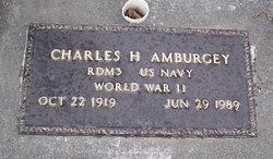 Charles H Amburgey
