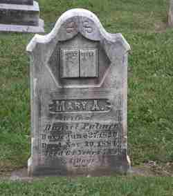 Mary A <i>Willet</i> Palmer