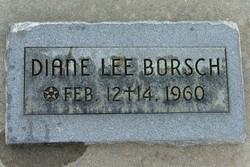 Diane Lee Borsch
