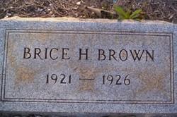 Brice H Brown