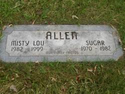 Sugar Allen
