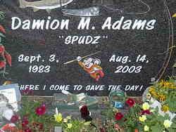 Damion M Adams