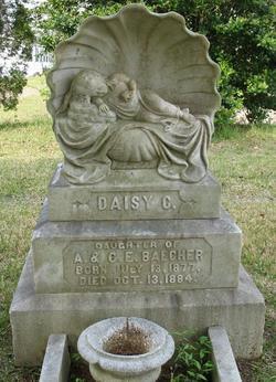 Daisy C. Baecher