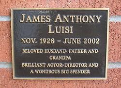 James Anthony Luisi