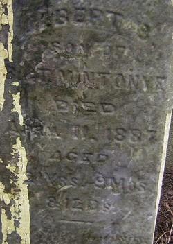 Albert B. Mintonye