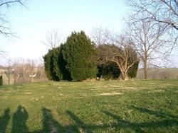 Grassy Lick Cemetery