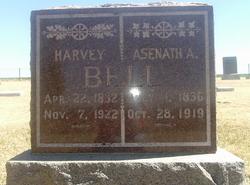 Harvey Bell