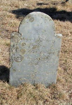 Abigail Palmer