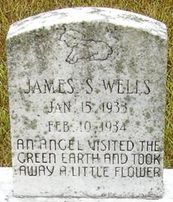 James Stanford Wells