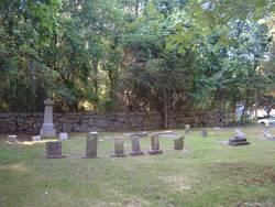 Fish Cemetery #02