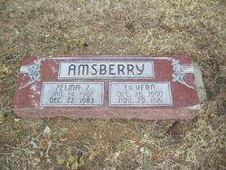 LaVern Amsberry