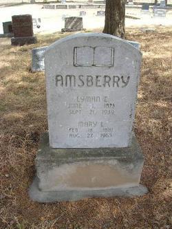 Mary Luelle <i>Wayne</i> Amsberry