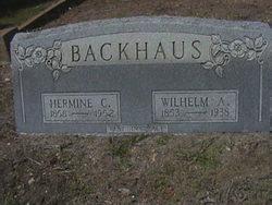Wilhelm A Backhaus