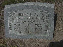 Herman A Backhaus
