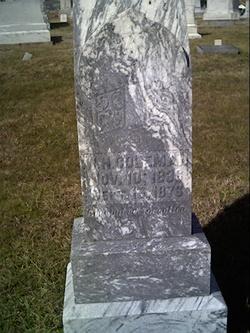 W. H. Coleman