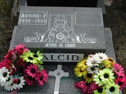 Antonio F Alcid