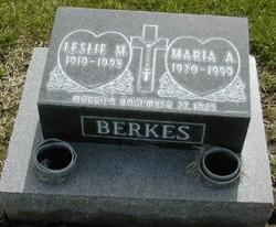 Maria Ann Berkes