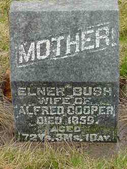 Elner <i>Bush</i> Cooper