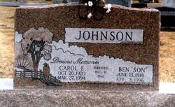 Carol Elaine <i>Jones</i> Johnson