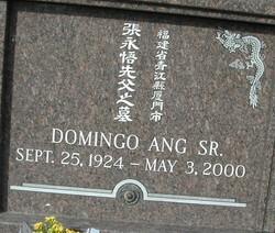 Domingo Ang, Sr